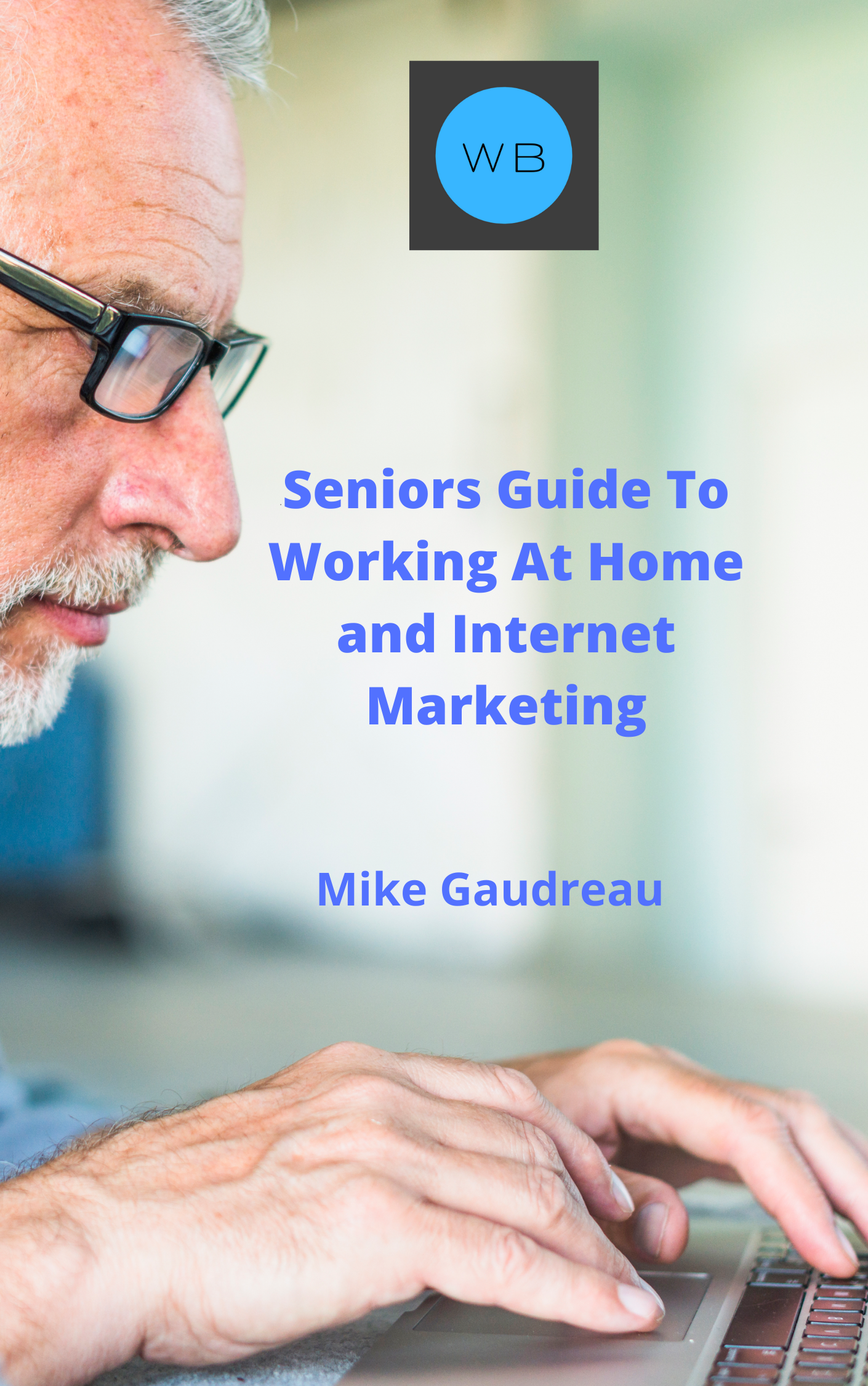 Seniors Guide To Working At Home and Internet Marketing - Deluxe 1